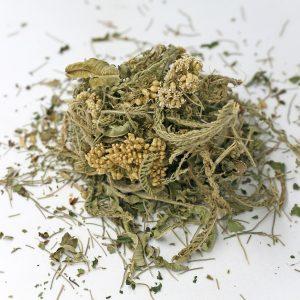 Herbal Tea for Kidney Support Tea Mix