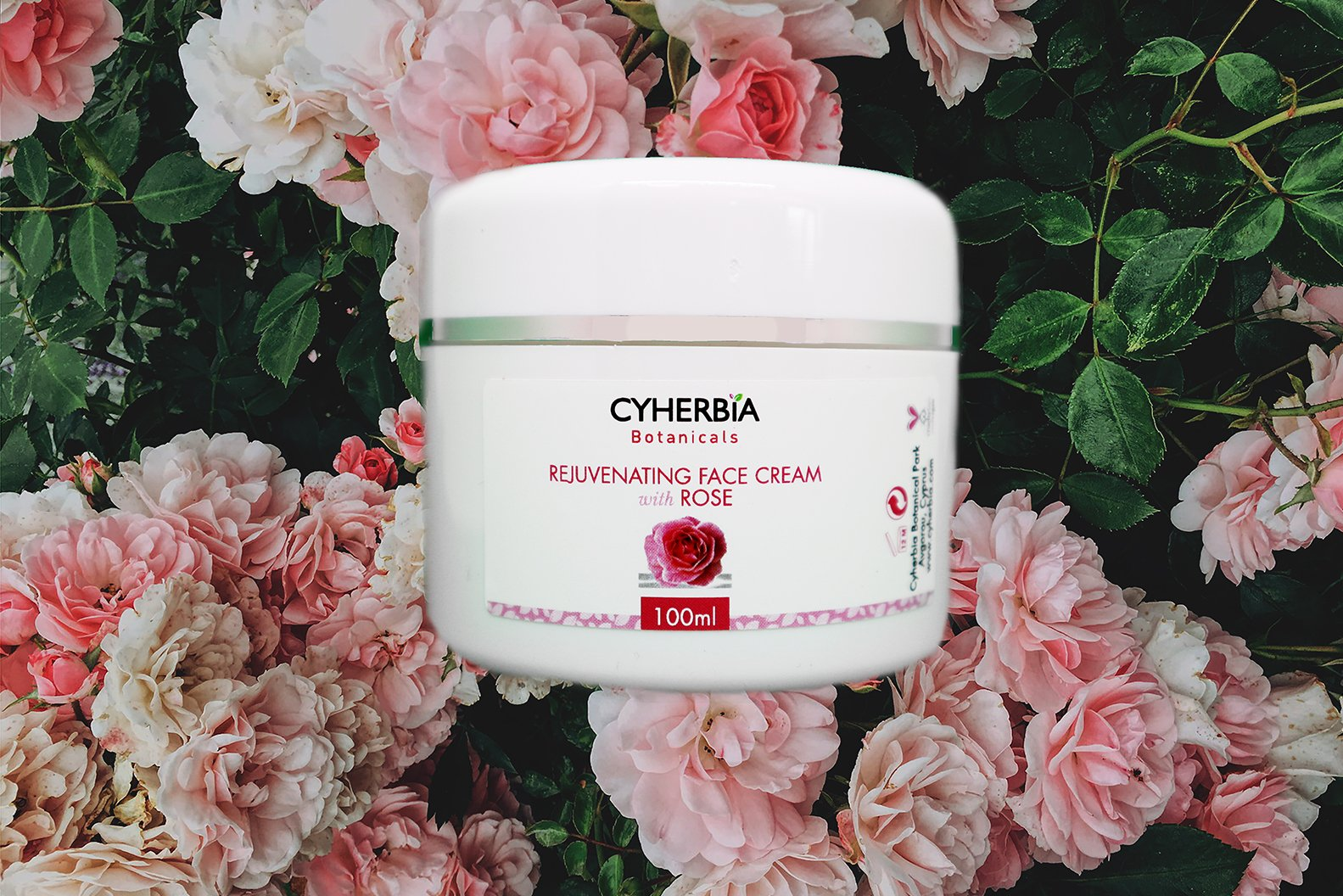 Rejuvenating Face Cream with Rose