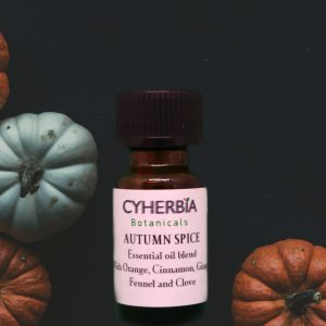 Autumn Spice essential oil blend