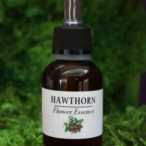 Hawthorn Flower Essence