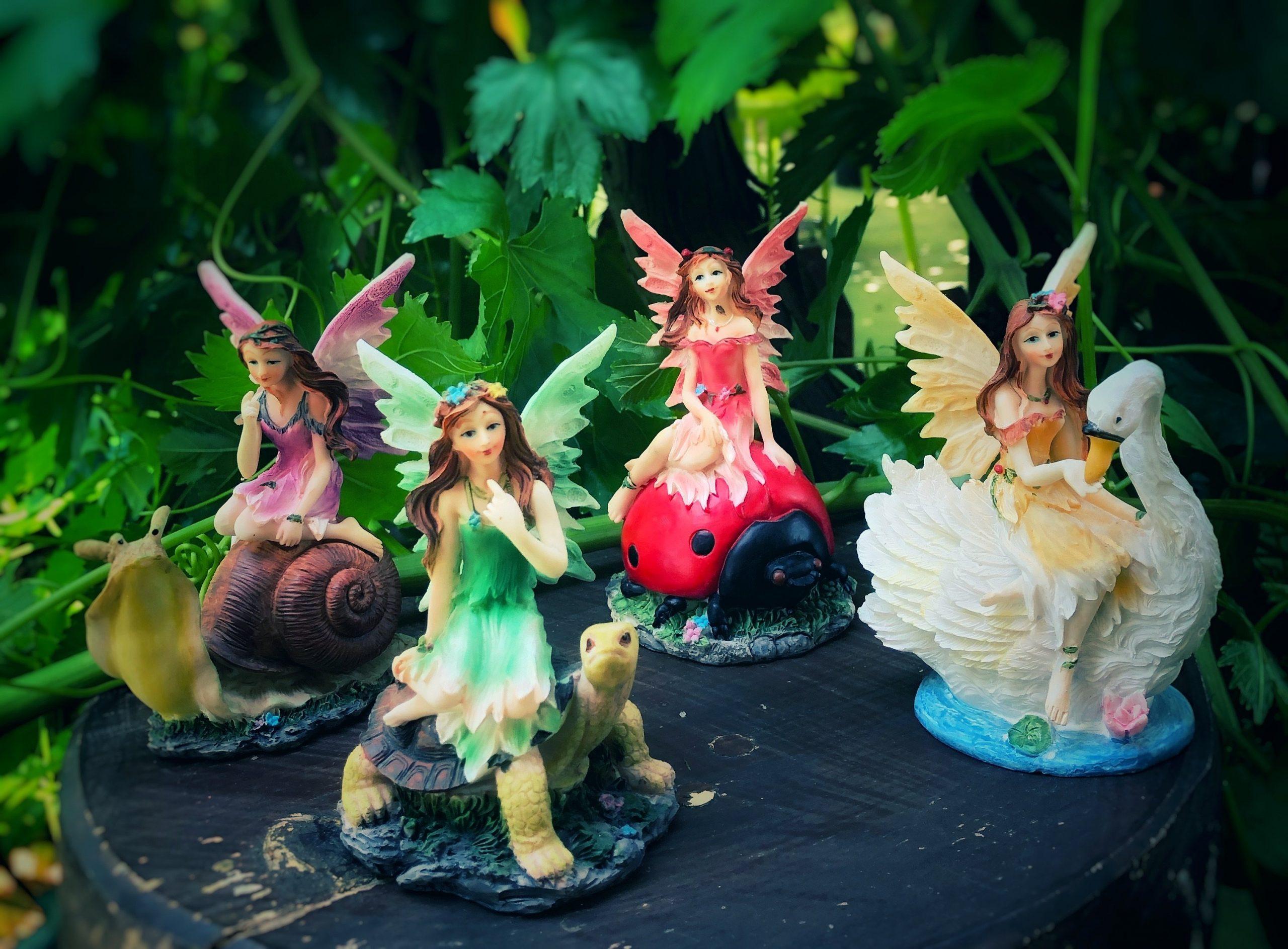 Fairies on Animals
