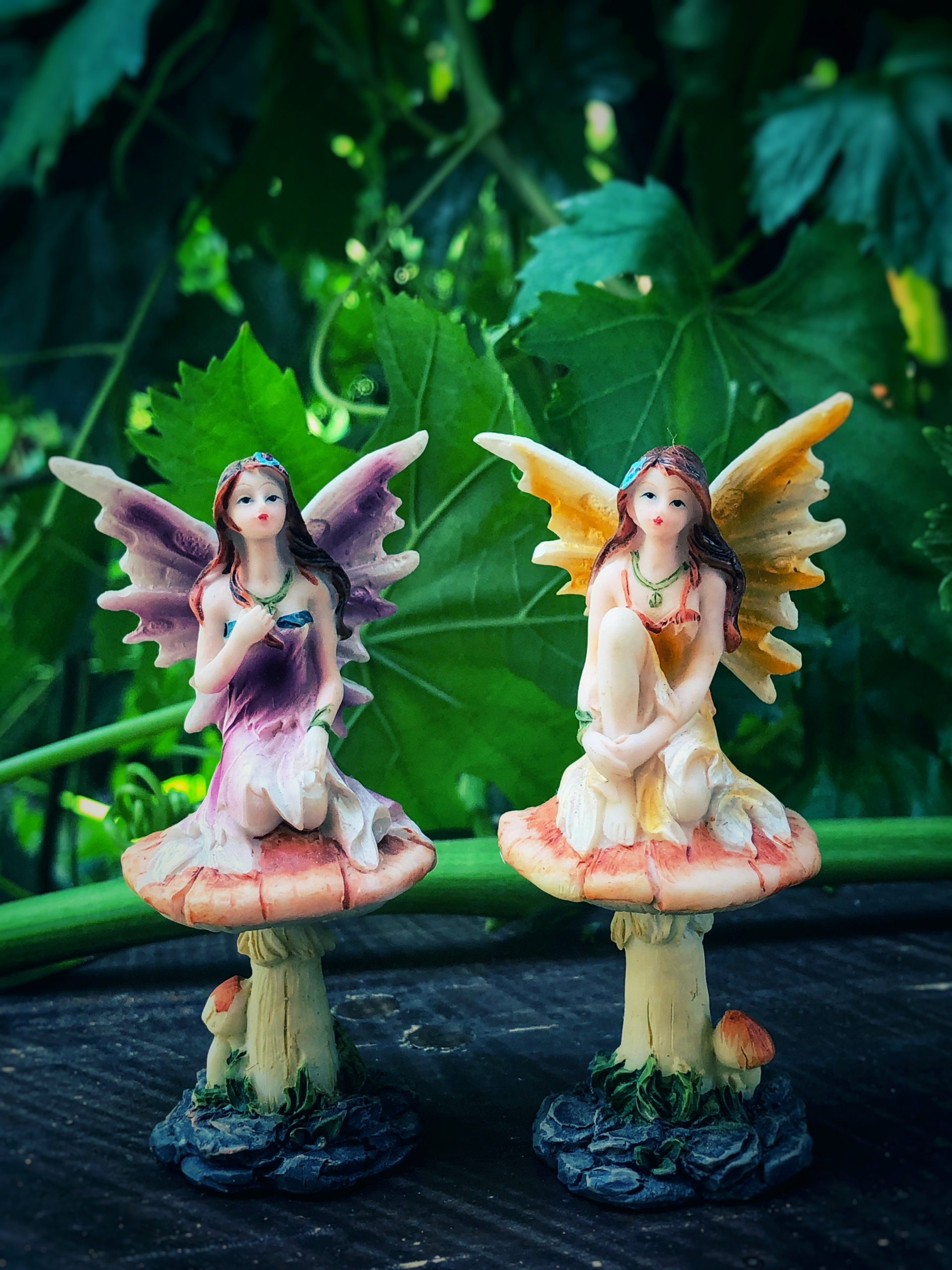Fairy on toadstool