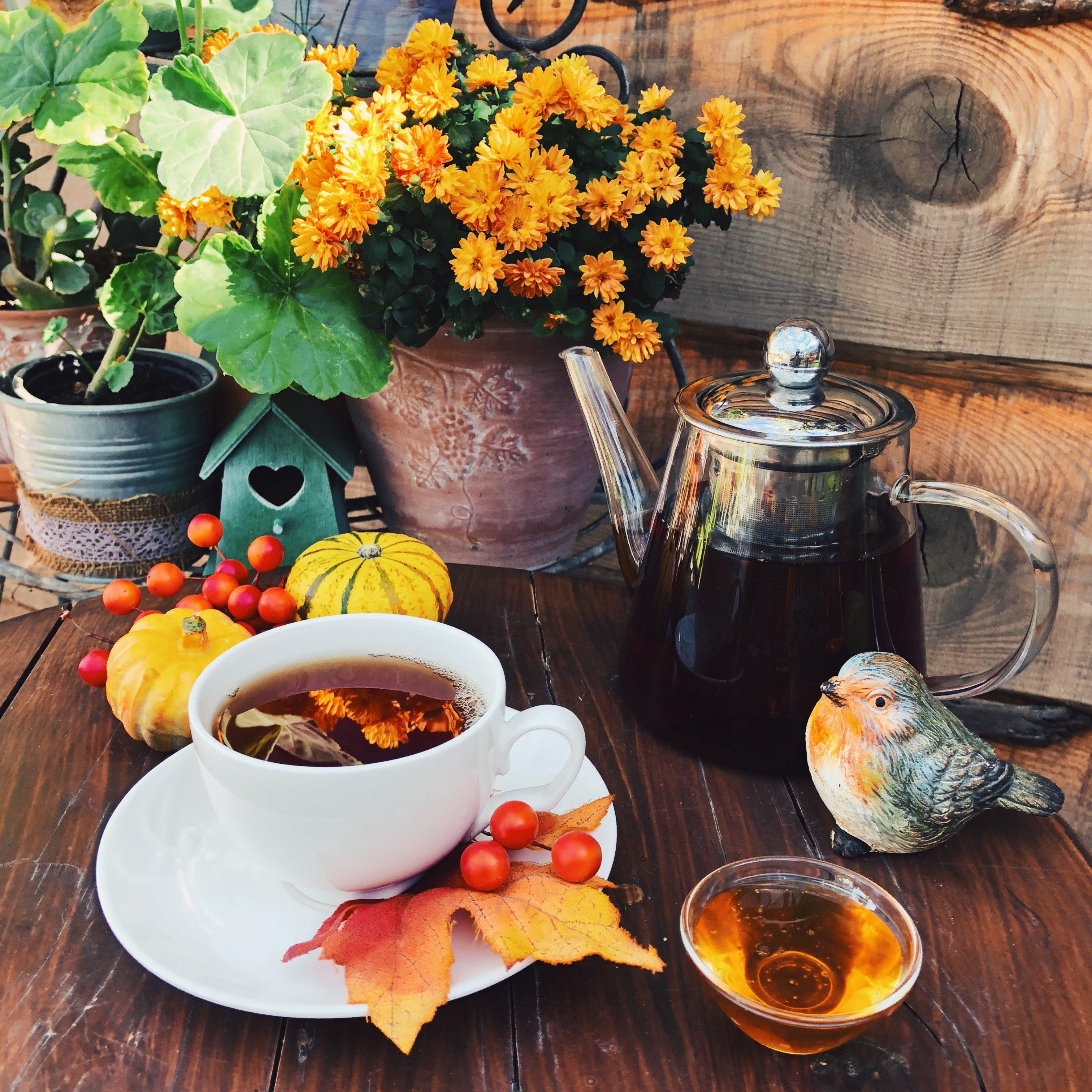 tea room at cyherbia