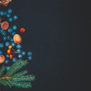 WINTER AND FESTIVE PRODUCTS