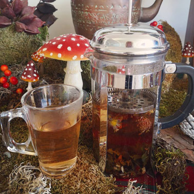 how to strenghten your immune system with herbal teas