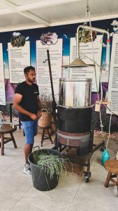 Essential Oil extraction demo during Lavender Festival 2021